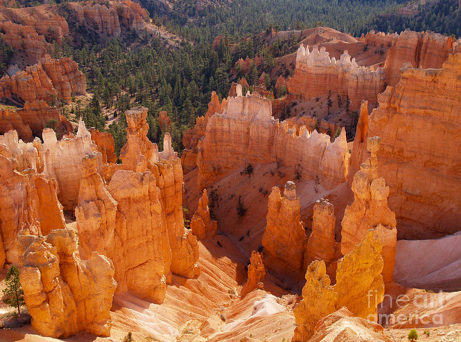 Landscape Photograph - Thors Hammer At Bryce Canyon In Utah by Alex Cassels