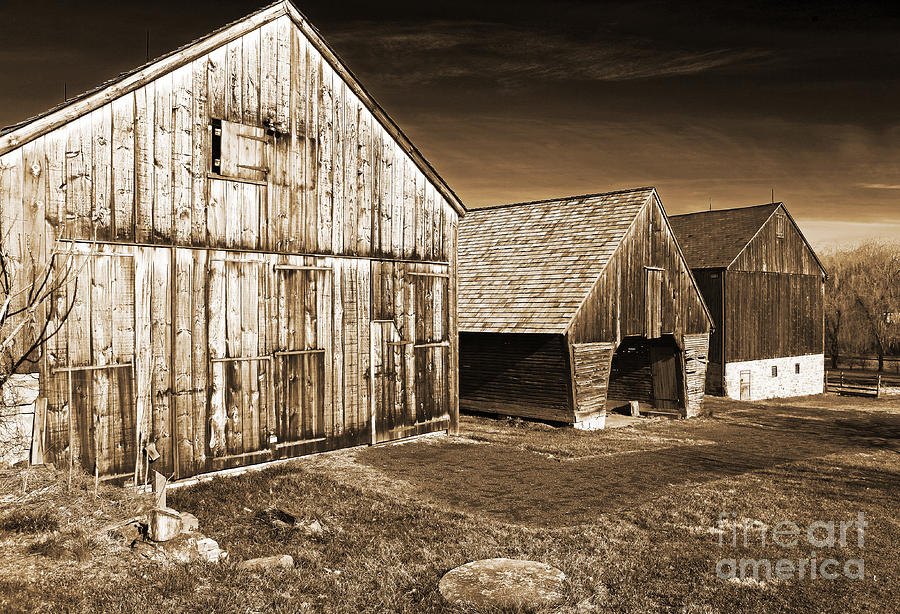 Pa Photograph - Three Barns by John Rizzuto