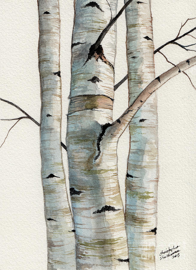 How To Paint Birch Wood Trees With Acrylic Videos