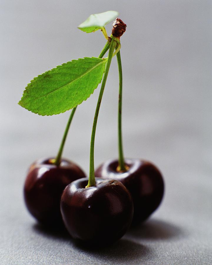Three Cherries On A Stem Photograph by Romulo Yanes