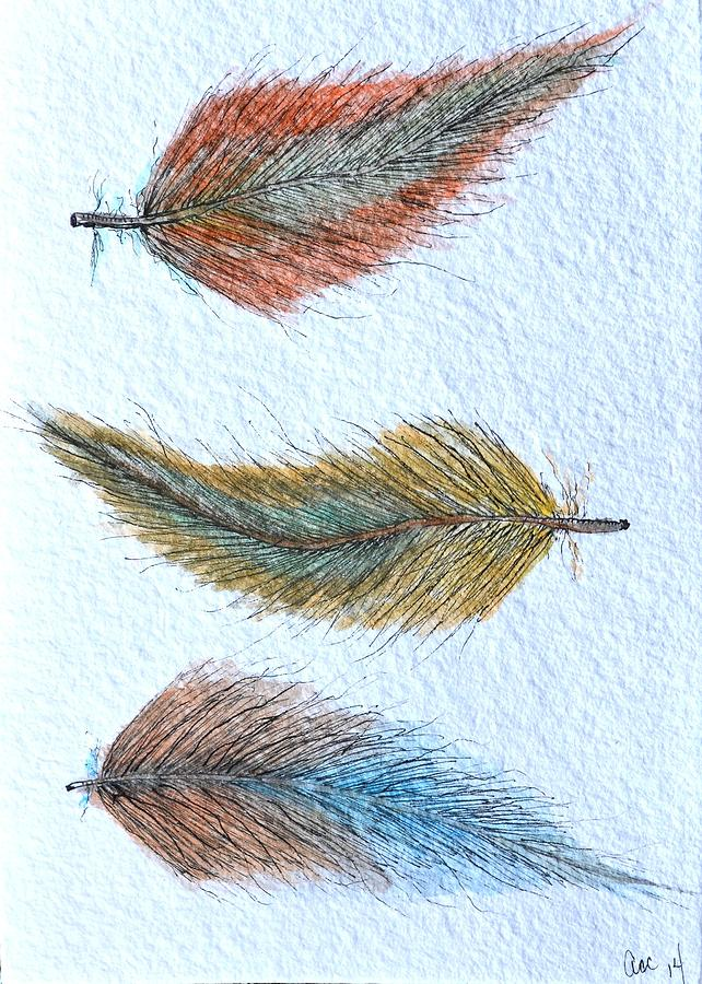Three Feathers by Anne Clark