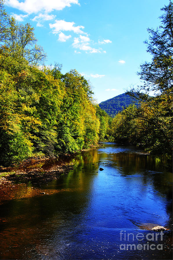 Williams River Photograph - Three Forks Williams River Early Fall by Thomas R Fletcher