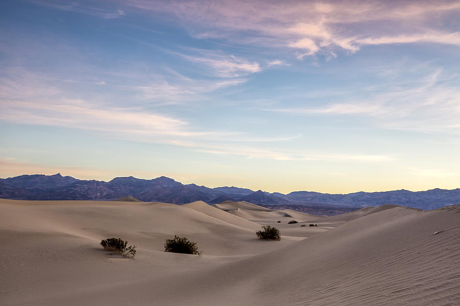 Blue Photograph - Three In The Sand by Jon Glaser