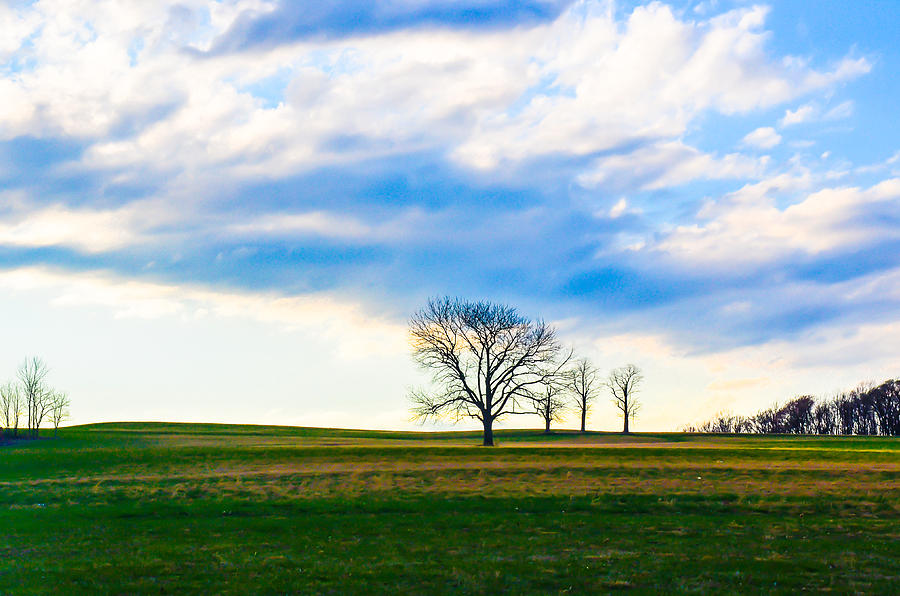 Landscape Photograph - Three Is A Crowd by Megan Stahl