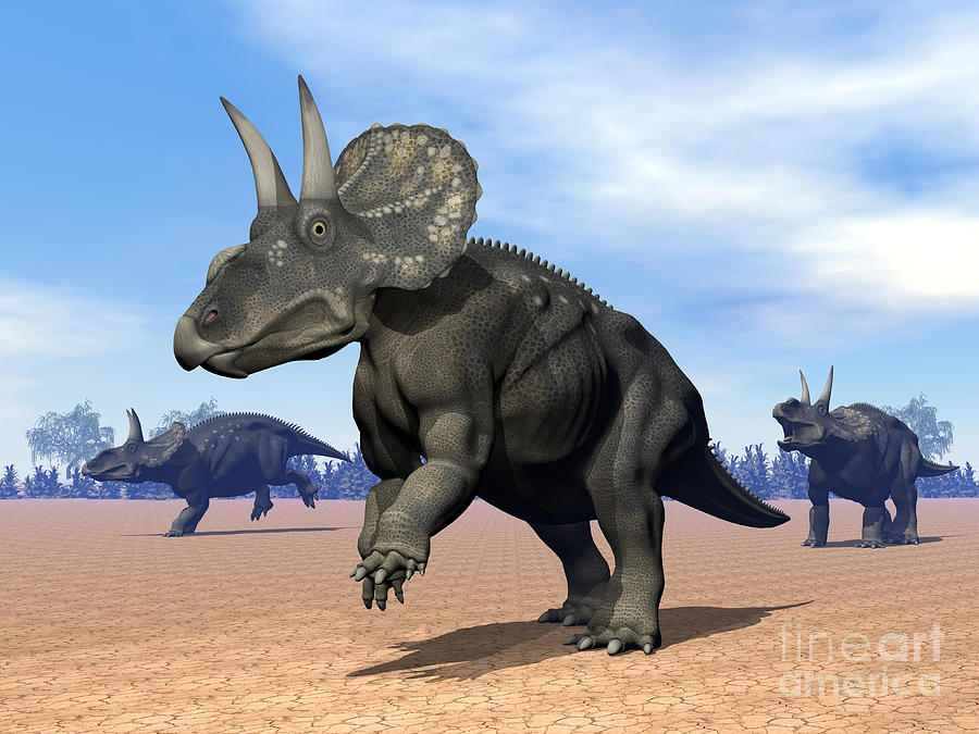 Three Dimensional Digital Art - Three Nedoceratops In The Desert by Elena Duvernay