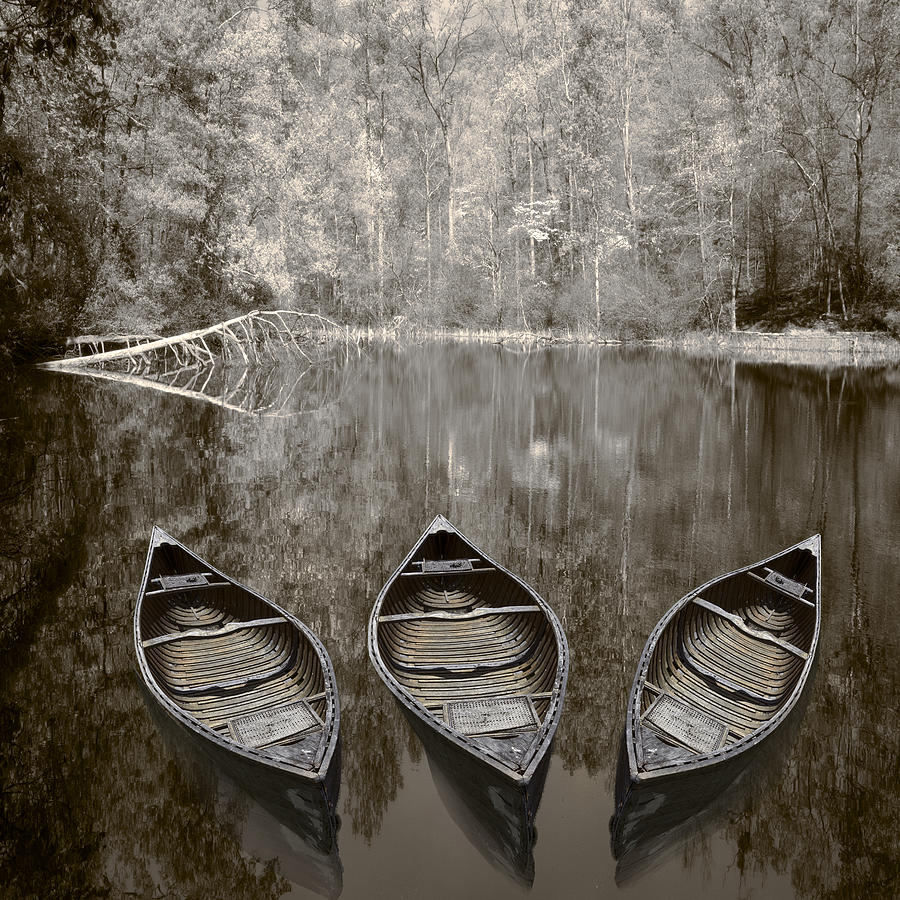 Appalachia Photograph - Three Old Canoes by Debra and Dave Vanderlaan