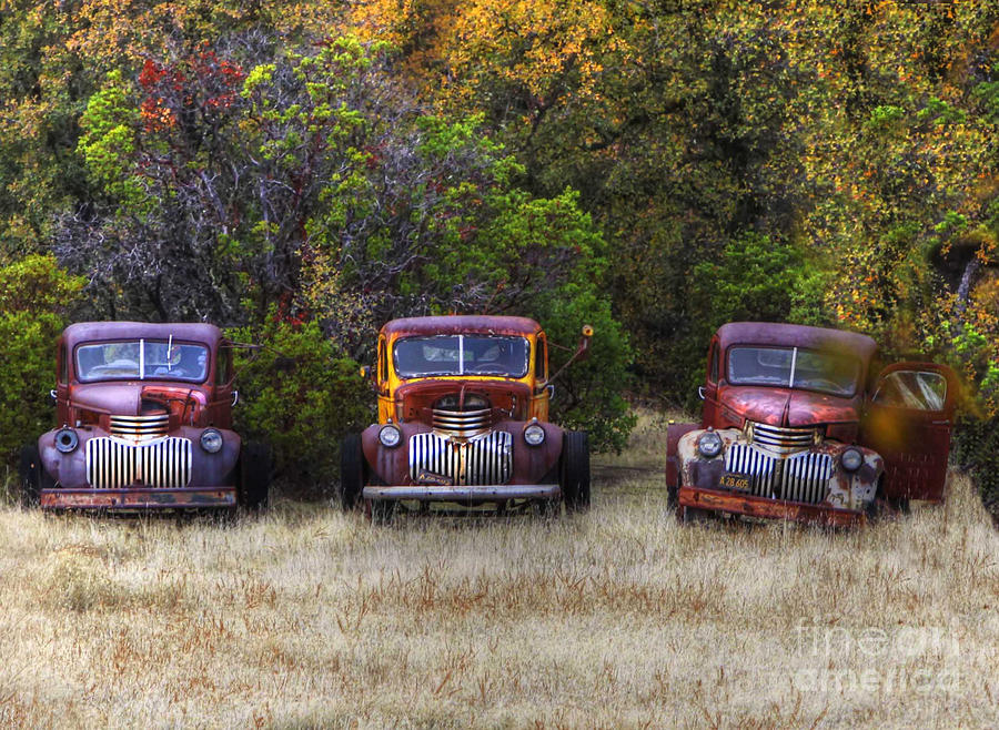 Trucks Photos Photograph - Three Old Friends by Kandy Hurley