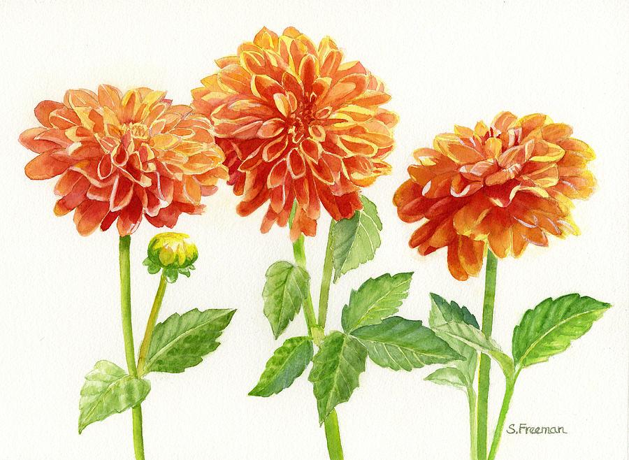 Dahlia Painting - Three Orange Dahlias by Sharon Freeman