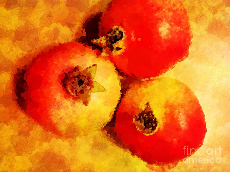 Three Pomegranates Photograph - Three Pomegranates by Mary Machare