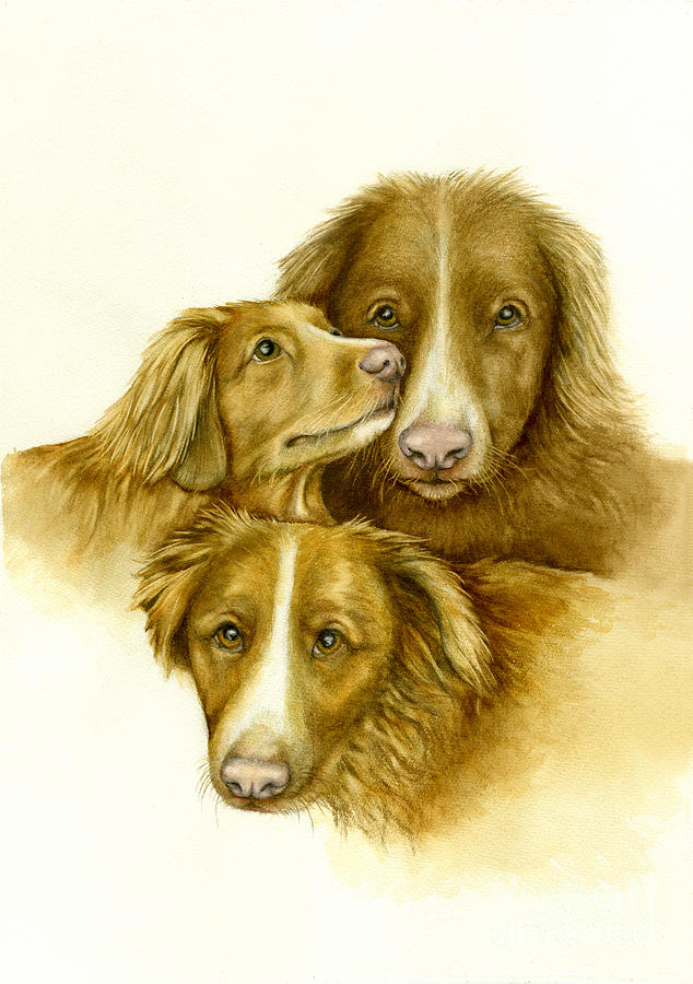 three Toller Dogs Painting - Three Toller Dogs by Nan Wright