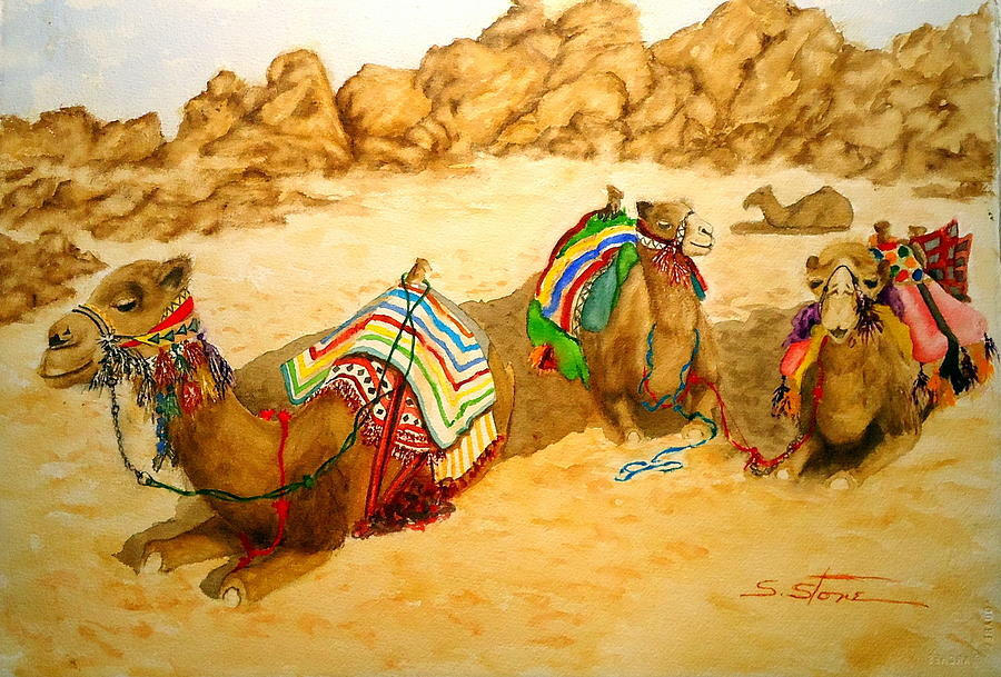 Animals Painting - Three Wise Mens Camels by Sandra Stone