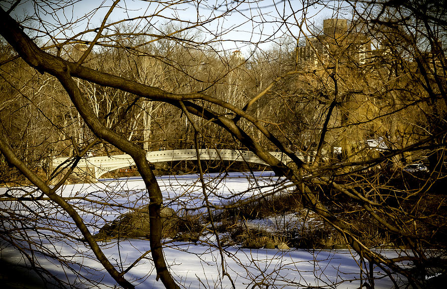 Bridge Photograph - Through The Branches 2 - Central Park - Nyc by Madeline Ellis