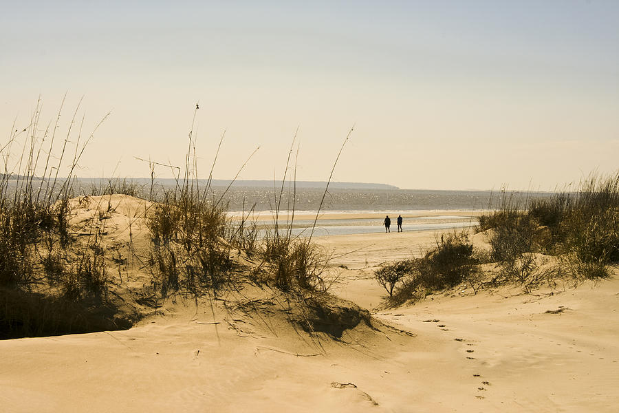 Beach Photograph - Through The Dunes by Barbara Northrup