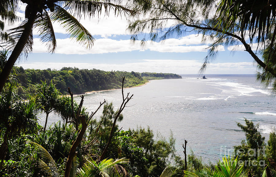 Remote Photograph - Through The Trees - A Remote Coastline On A Tropical Island by David Hill