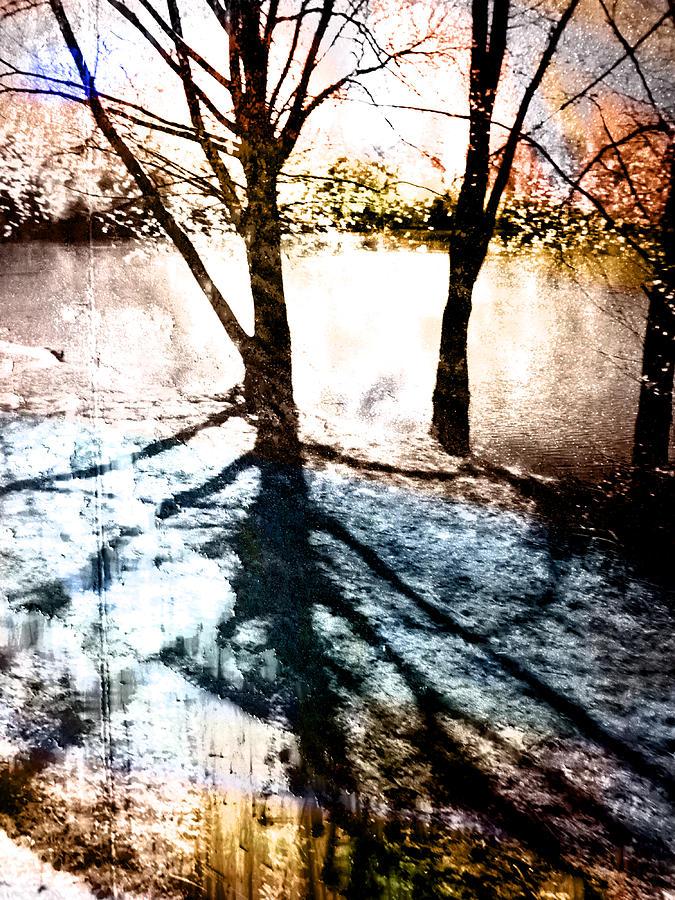 Blue Photograph - Through The Trees by Florin Birjoveanu