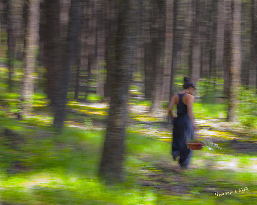 Impressionist Photograph - Through The Woods 2 by Theresa Tahara