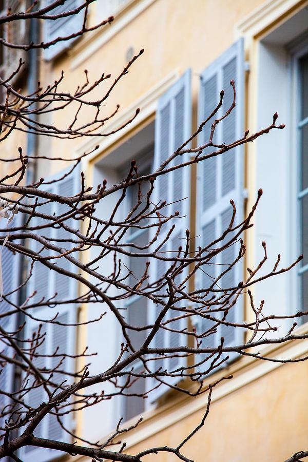 Aix-en-provence Photograph - Through Winters Twigs by W Chris Fooshee