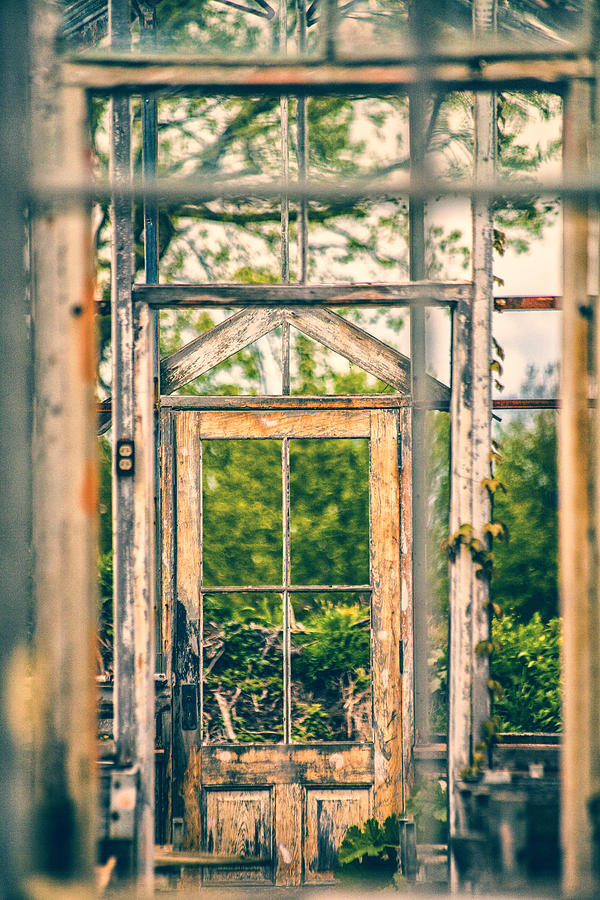 Greenhouse Photograph - Thru Times Window by Karol Livote