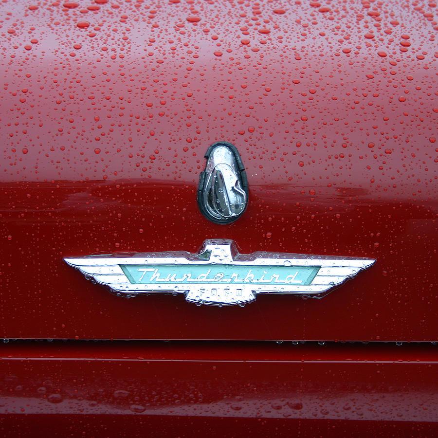 Thunderbird Photograph - Thunderbird Squared by Nina Fosdick