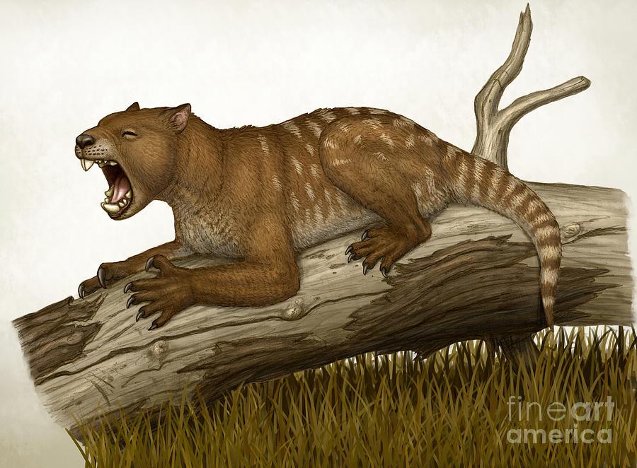 Horizontal Digital Art - Thylacoleo Carnifex, A Marsupial by Heraldo Mussolini