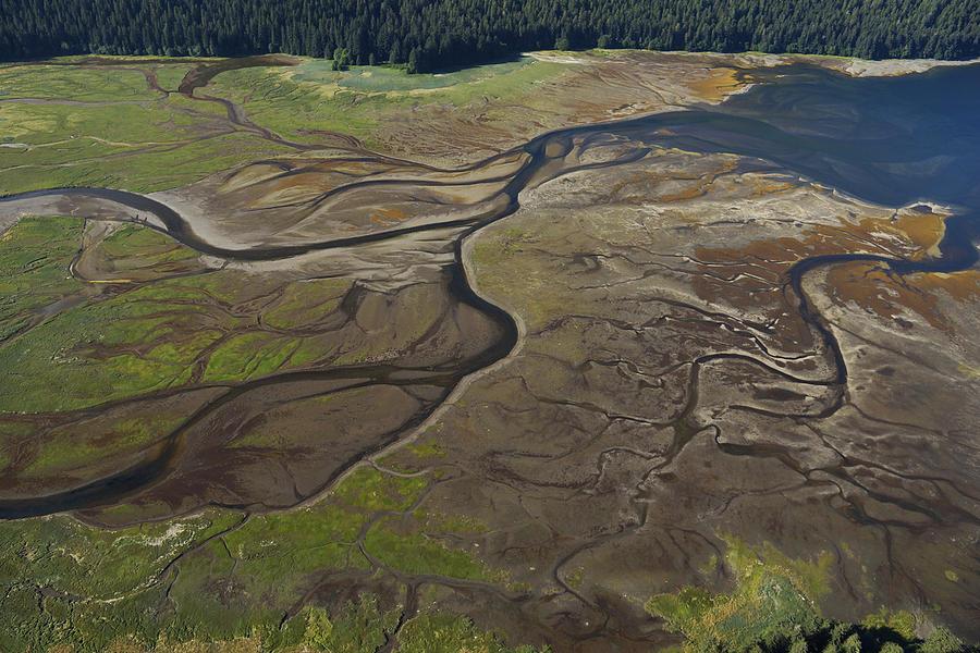 Tidal Flat Inside Passage Alaska Photograph by Hiroya Minakuchi