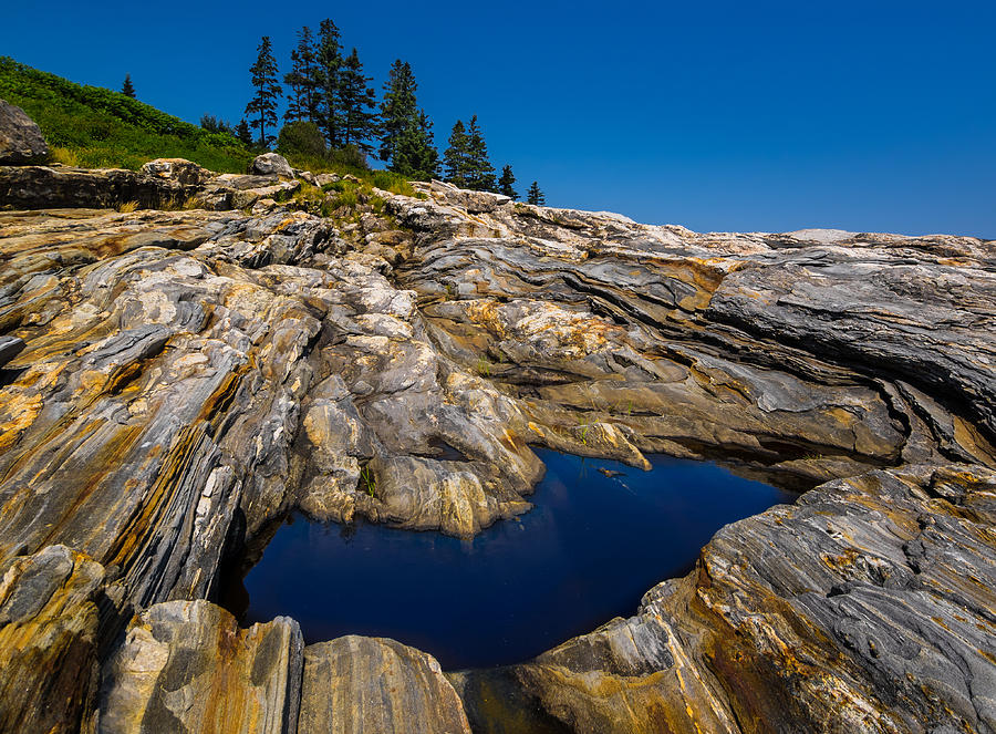 Tidal Pool by Steve Zimic