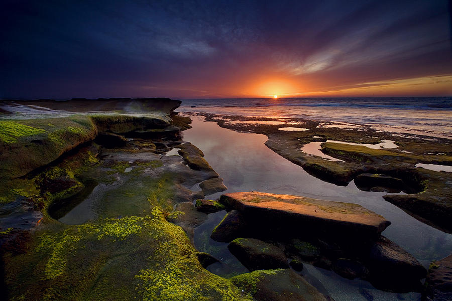 Ocean Photograph - Tidepool Sunsets by Peter Tellone