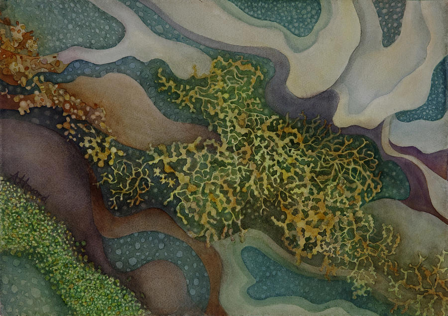 Tidepool Textures by Anne Havard