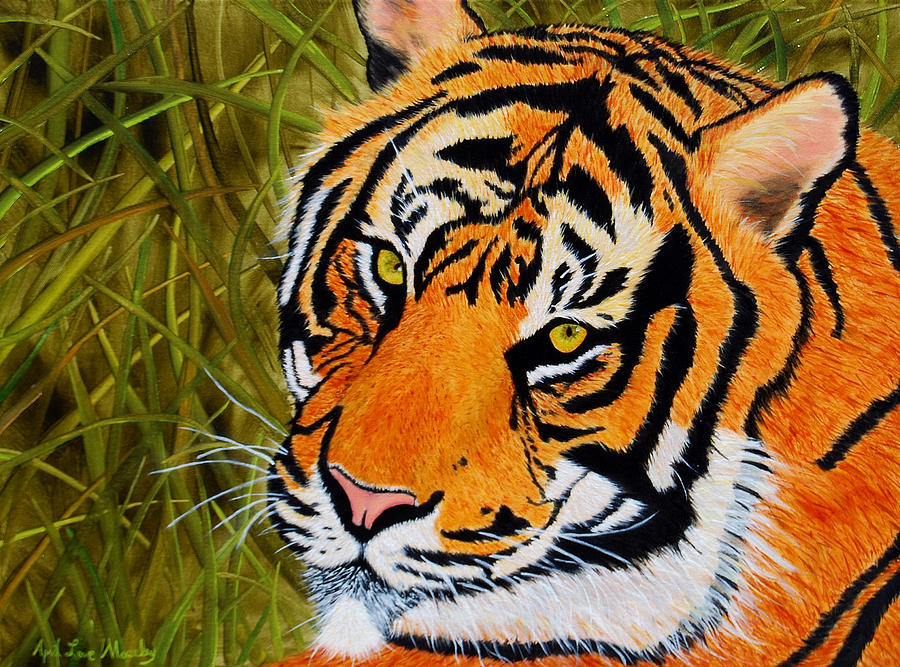 Tiger Painting - Tiger by April Moseley