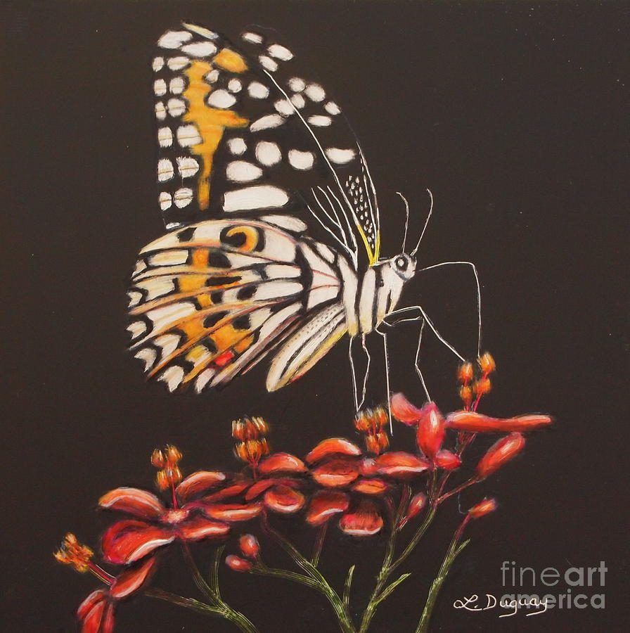 Tiger Butterfly by Lora Duguay