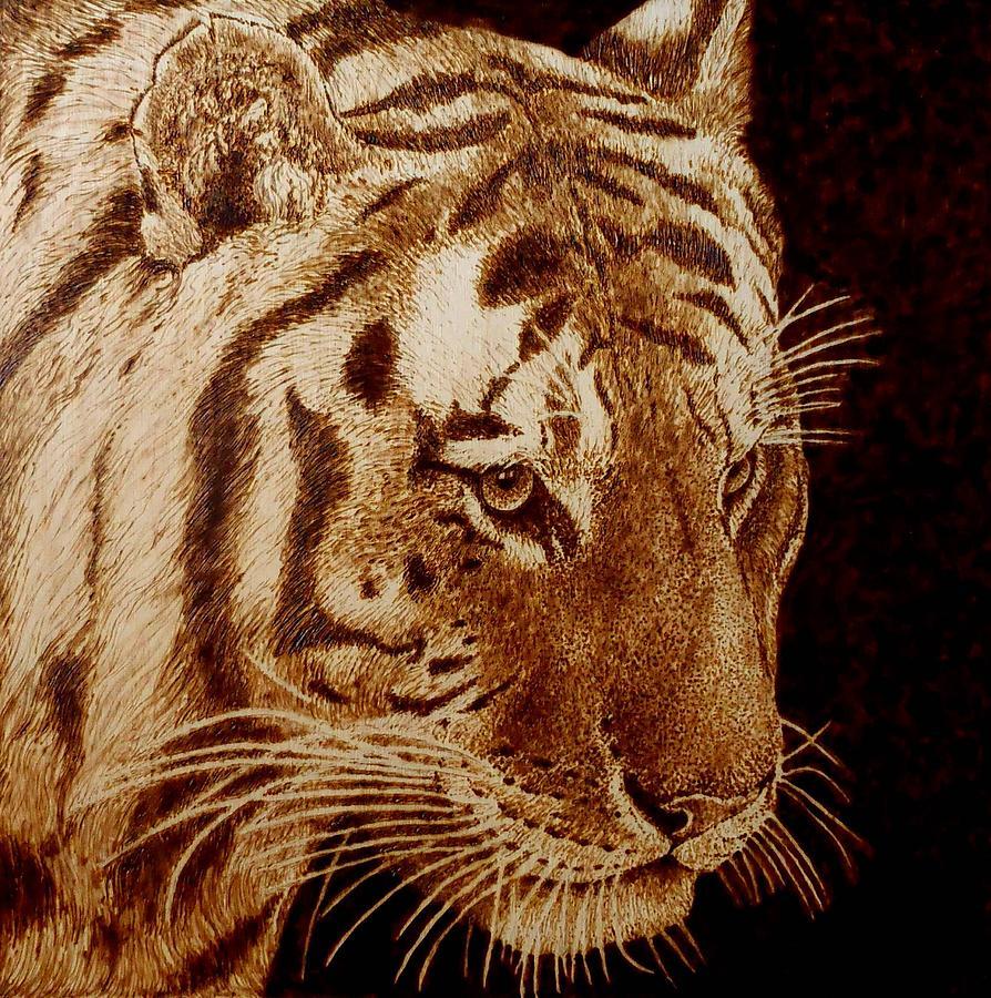 Tiger Pyrography by Cara Jordan