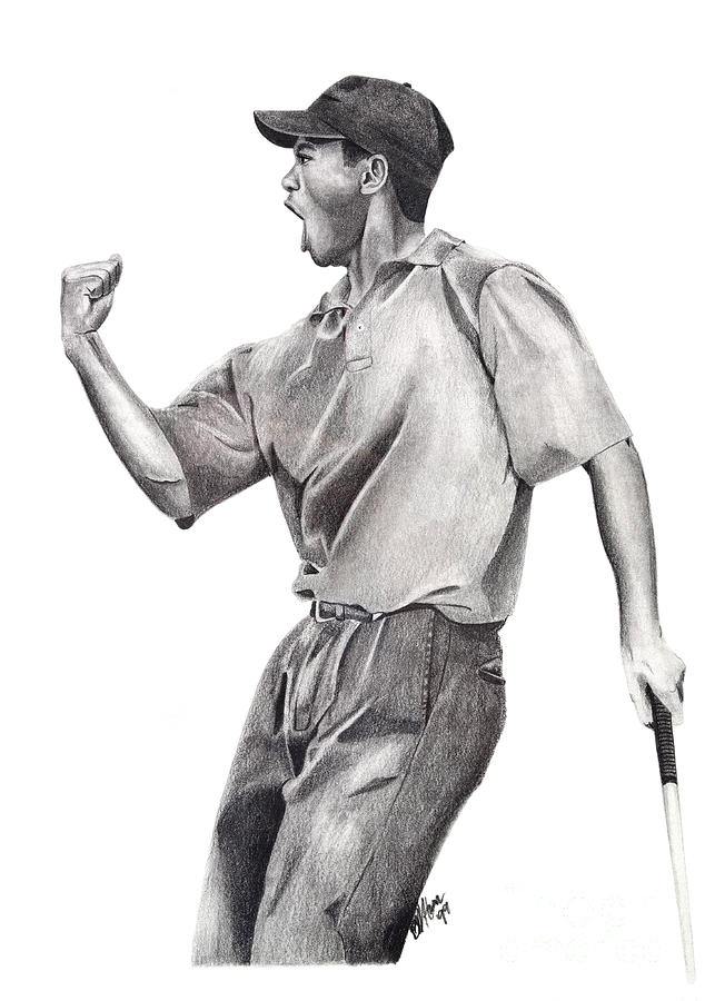 Tiger Woods Drawing - Tiger Woods Iconic by Devin Millington