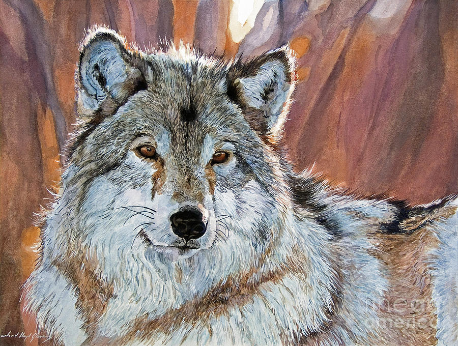 Wolf Painting - Timber Wolf by David Lloyd Glover