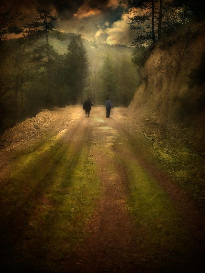 Woods Photograph - Time Stand Still by Taylan Apukovska