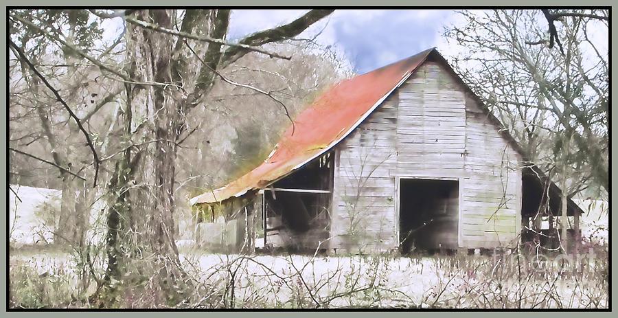 Barn Photograph - Timeless by Betty LaRue