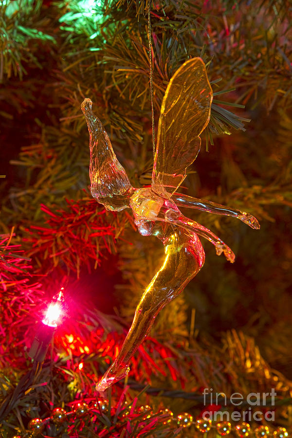 Tink Photograph - Tinker Bell Christmas Tree Landing by James BO  Insogna