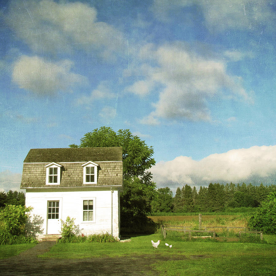 Tiny Country House Photograph by Francois Dion