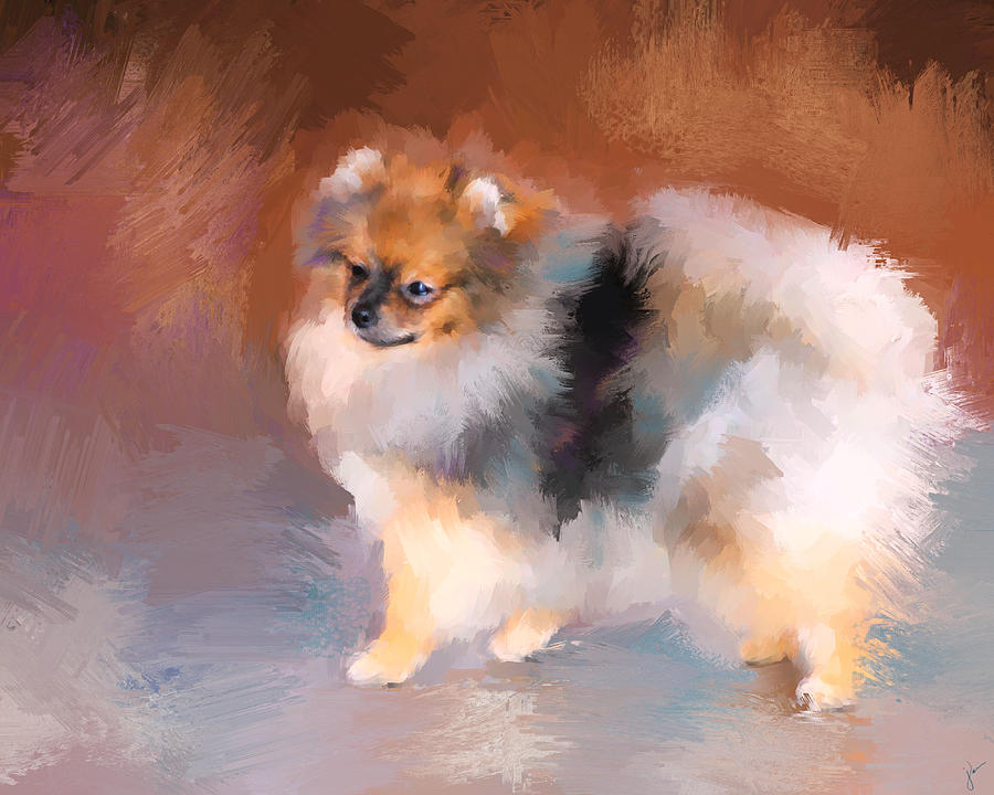 Tiny Pomeranian Painting By Jai Johnson