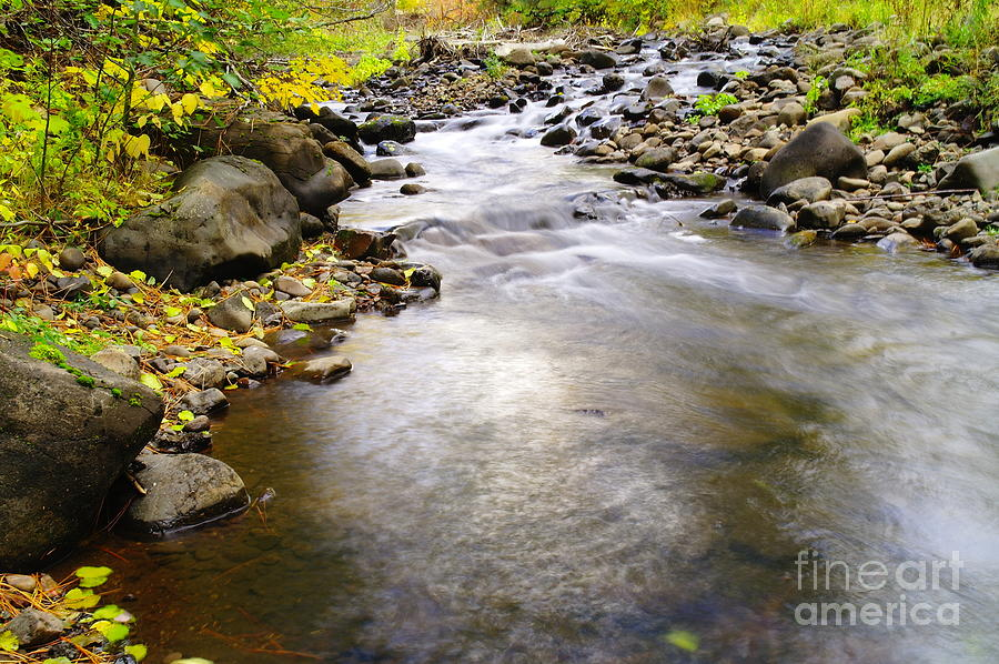Water Photograph - Tiny Rapids At The Bend  by Jeff Swan