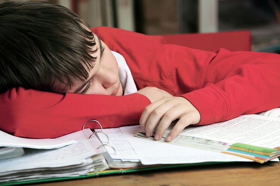 Human Photograph - Tired Boy Asleep On His Homework by Mauro Fermariello/science Photo Library