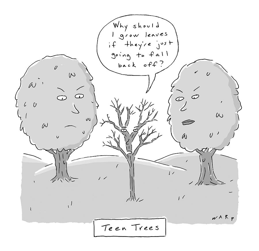 Title: Teen Trees Drawing by Kim Warp