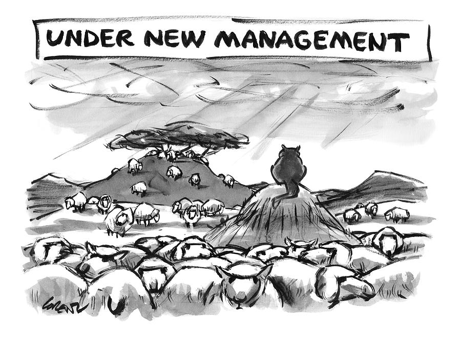 Title: Under New Management.  A Cat Overlooks Drawing by Lee Lorenz
