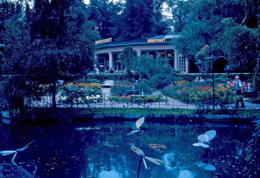 Tivoli Gardens Photograph - Tivoli Gardens 8 1963 by Cumberland Warden
