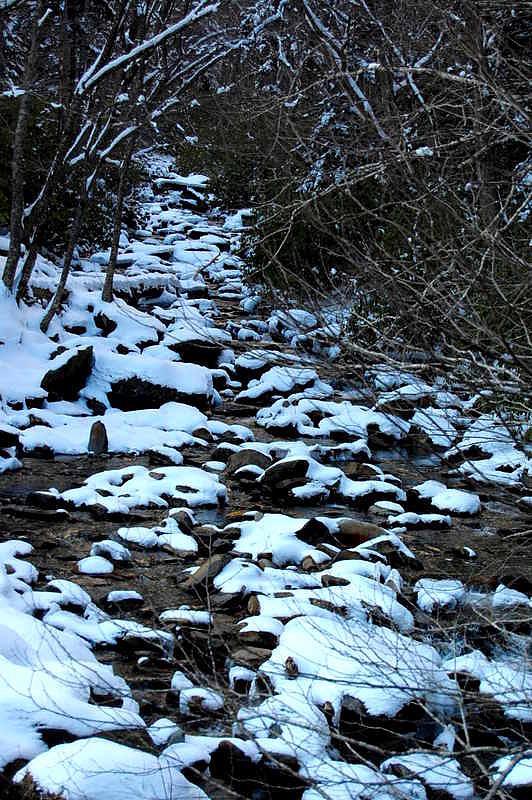 Creek Photograph - Tn Creek by Joyce Brooks