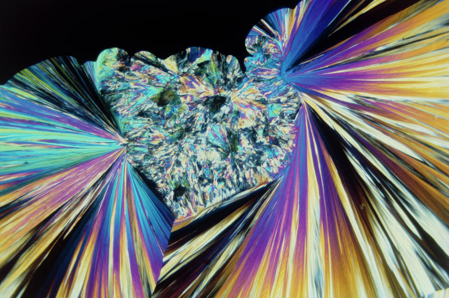 Plm Photograph - Tnt Explosive Crystals by Stephen A. Skirius/science Photo Library