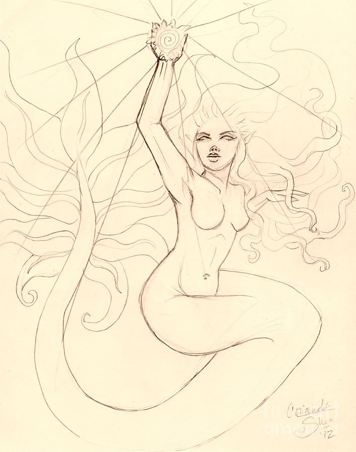 Mermaid Drawing - ...to Catch A Falling Star... Sketch by Coriander  Shea