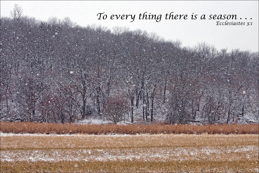 Text Photograph - To Every Thing There Is A Season by Nikolyn McDonald