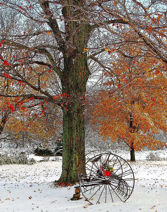 Berry Drawing - To Everything There Is A Season... by Diane E Berry
