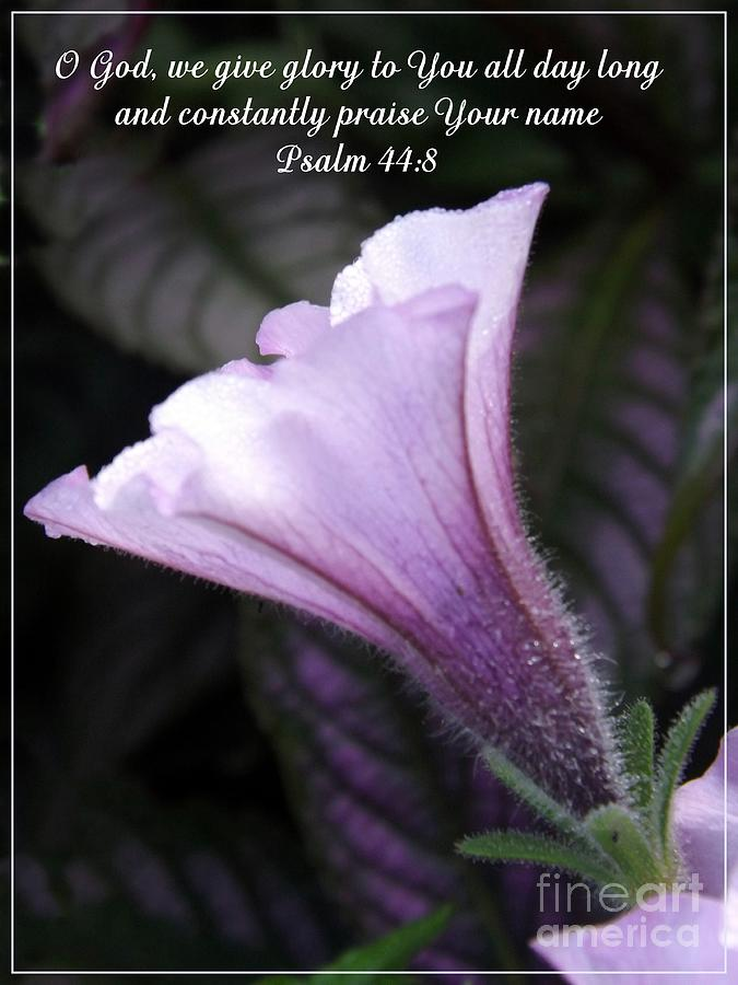 Bible Photograph - To God Give The Glory by Sara  Raber