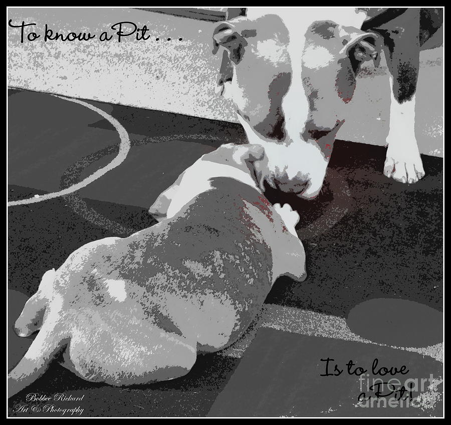 Acrylic Prints Photograph - To Know A Pit Is To Love by Bobbee Rickard